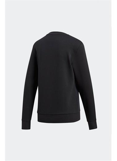 adidas Adidas Dp2363  Kadın Sweatshirt Renkli